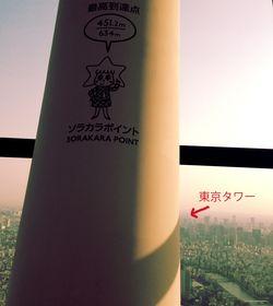 東京タワーはここ